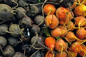 red and orange beets